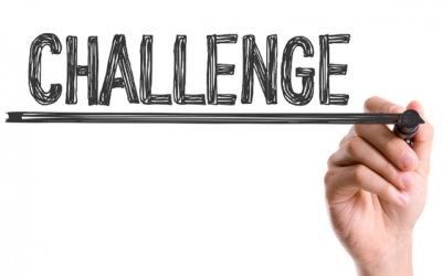 Small Business Owner Challenges